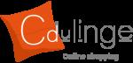 Code promo Cdulinge